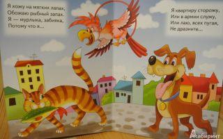 Хитрые загадки-обманки для детей про животных